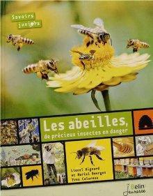 Image: Les abeilles, de précieux insectes en danger