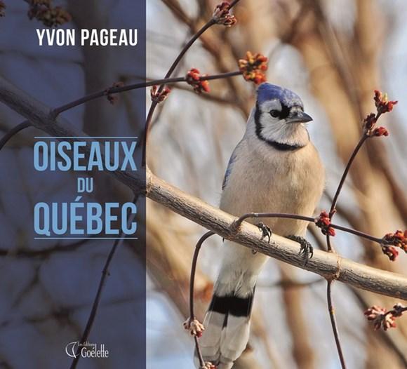 Image: Oiseaux du Québec
