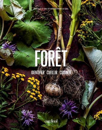 Image: Forêt