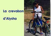 La crevaison d'Alysha