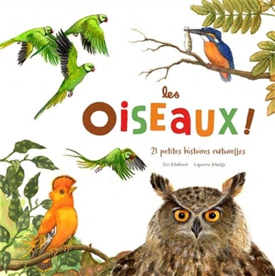 Image: Les oiseaux!