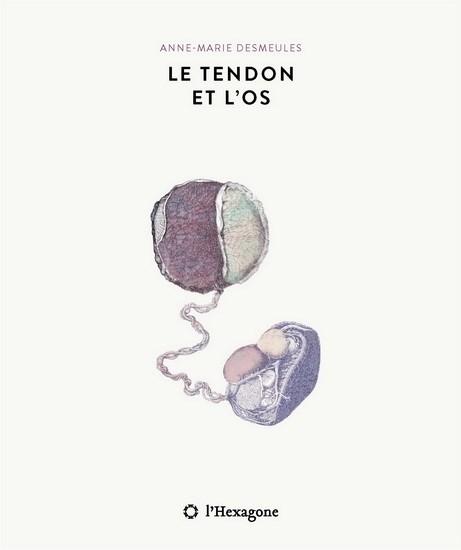 Image: Tendon Et L'os (Le)