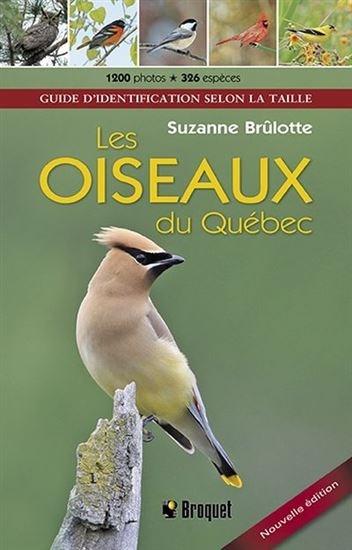 Image: Les oiseaux du Québec