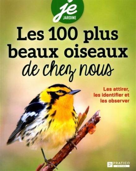 Les 100 plus beaux oiseaux de chez-nous