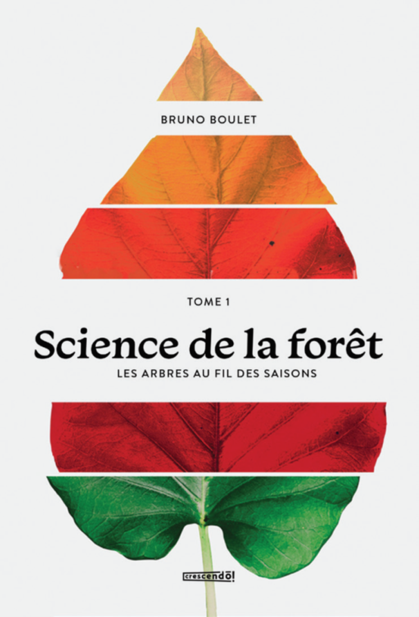Science De La Forêt T.01 Les Arbres